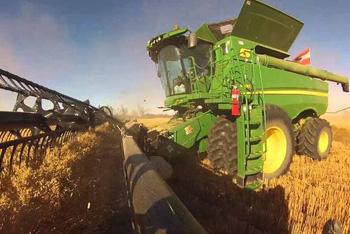 Работа на ферме в Канаде