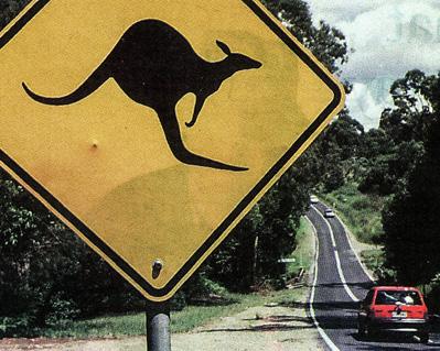 Профессии в Австралии