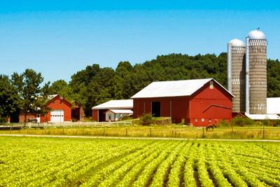 Разнорабочий на ферму